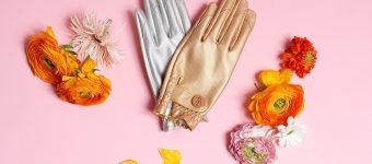 Garden Glory- für das goldene Händchen im Garten